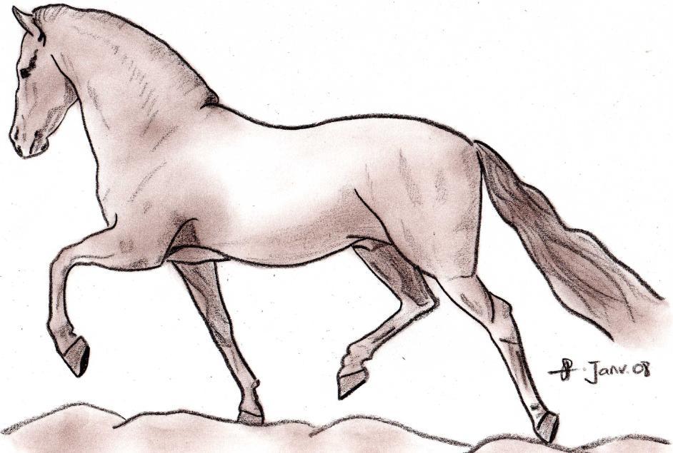 Chevaux de neige facile a dessiner - Dessin de chevale ...